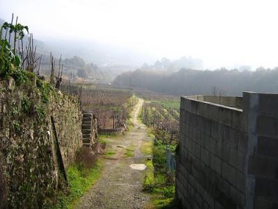 La huerta y la aldea