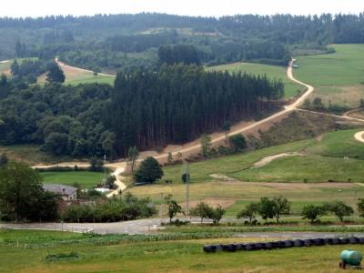 Nuevos caminos en Bárzana