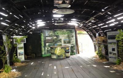 Naturaleza en galería entibada