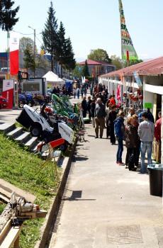 Aspecto de la Feria de Muestras de 2013 jpg