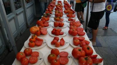 tomates jpg