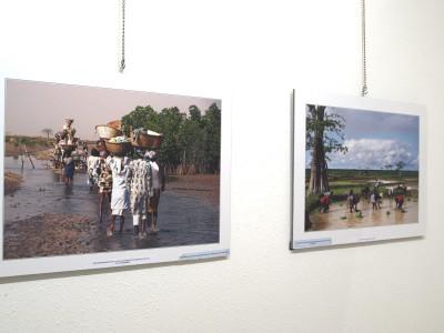 Exposicion LATE Asturias