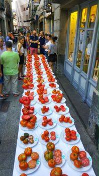 Festival del Tomate en Cangas del Narcea