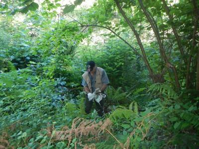 La vegetación dificultó las labores