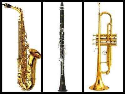 1343253422_419321289_3-INTRUMENTOS-Y-ACCESORIOS-PARA-SAXO-CLARINETE-Y-TROMPETAS-Instrumentos-Musicales