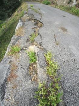 Estado carretera