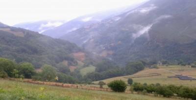 nieblas jpg.