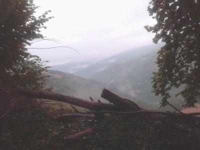 nieblas1 jpg.