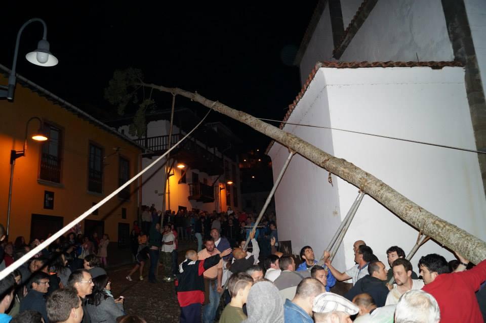 CANGAS DEL NARCEA.- Un gran árbol para una noche de  nostalgias y madrugadas de folixas