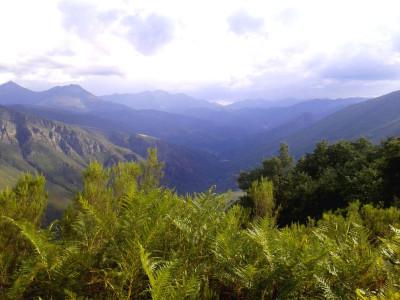 MARIBEL. Vista Parque desde Penaventana