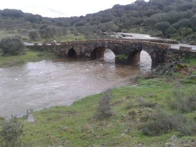 Puente jpg
