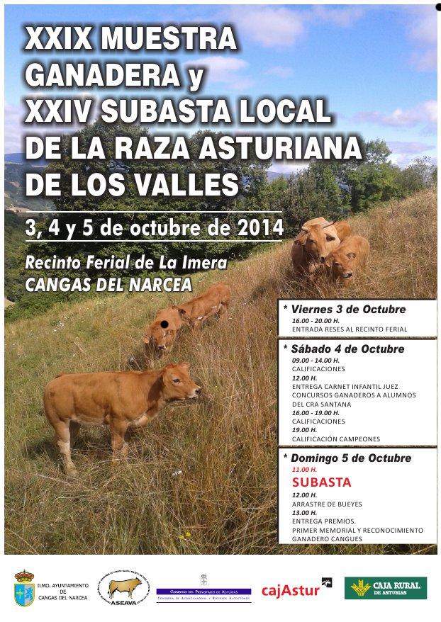 cartel_subasta_local