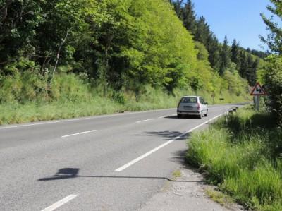 Carretera entre Cangas y Corias