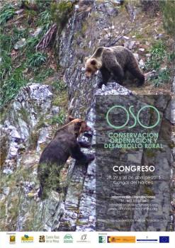 Cartel congreso OSO