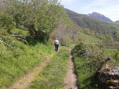 Camino de Brañas