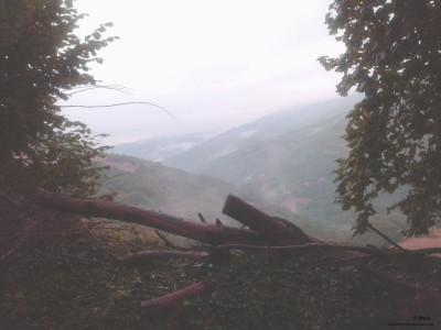 nieblas1-jpg. copia
