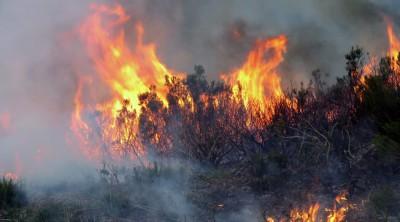 incendios_cangas_del_narcea