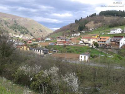 Corias