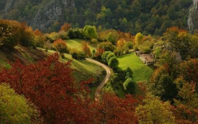 parque-natural-de-redes-asturias-espana_7258