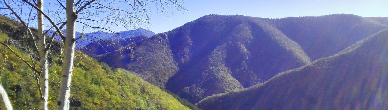 CANGAS DEL NARCEA.- Muniellos, uno de los bosques más increíbles de España