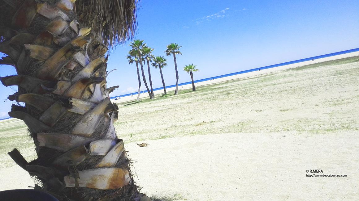 CANGAS DEL NARCEA.- Nieve en Leitariegos y palmeras en la playa