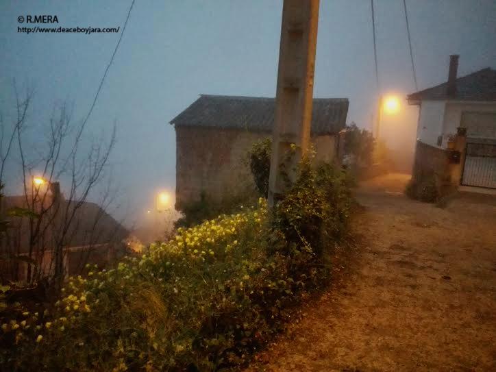 NARCEA/BERZOCANA- La foto y su pie: Vuelta a la niebla