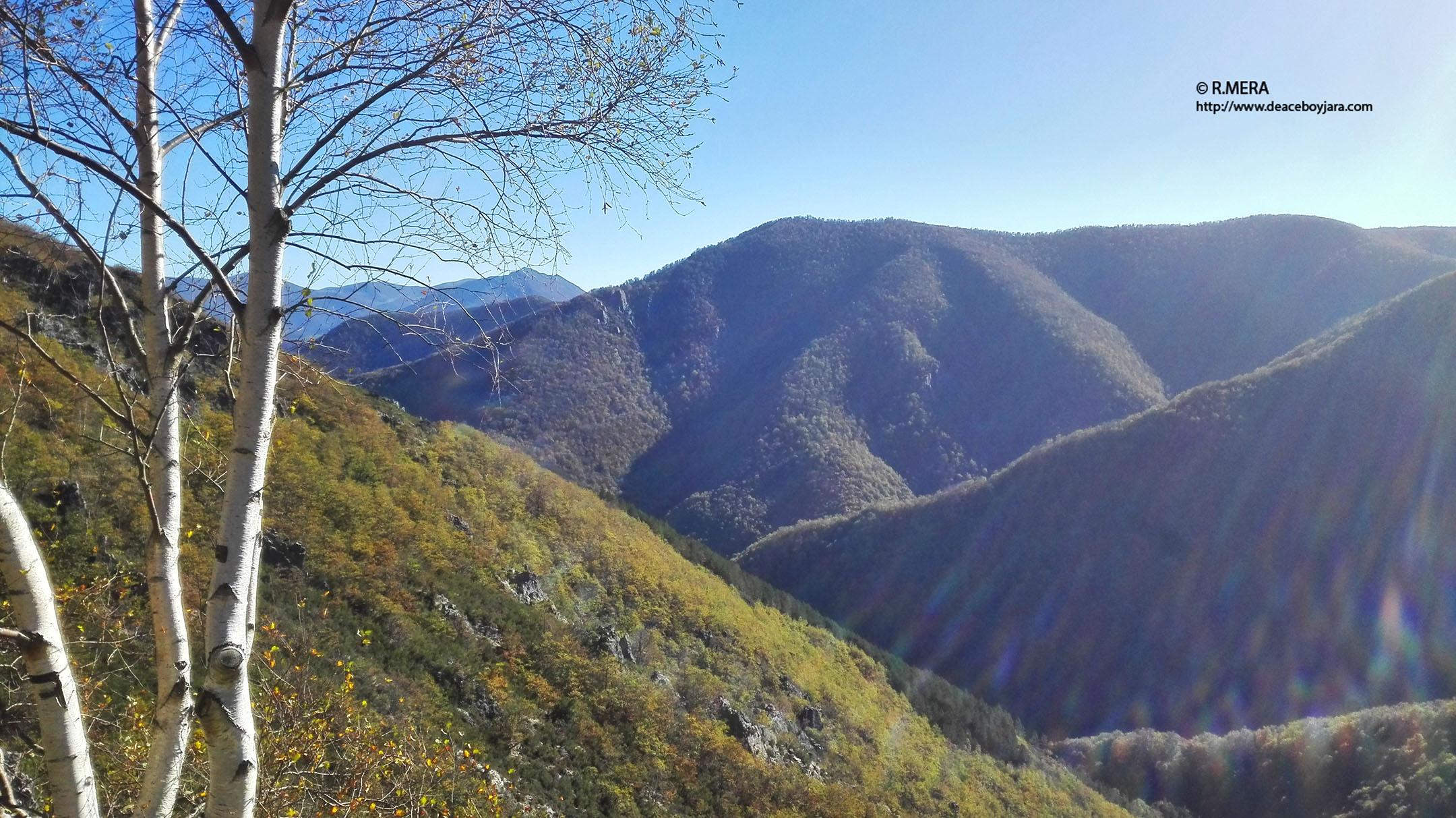 CANGAS DEL NARCEA.- Memoria económica del Parque Natural de Fuentes del Narcea