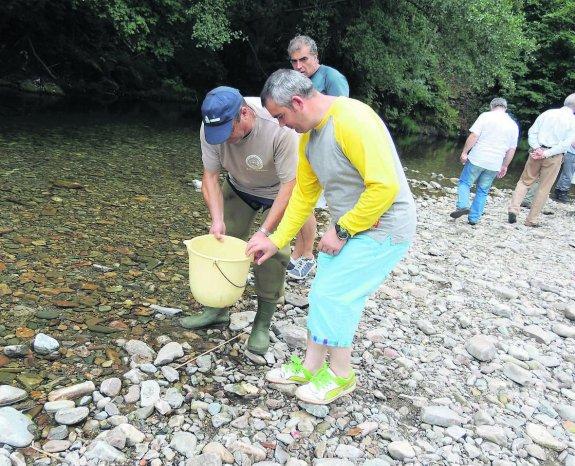 """CANGAS DEL NARCEA.- """"Las Mestas"""" piden poder repoblar los ríos de Cangas"""