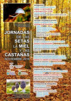 carteles-jornadas-de-las-setas-2016