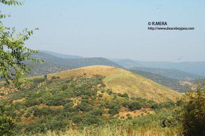 El Cerro de las Viñas