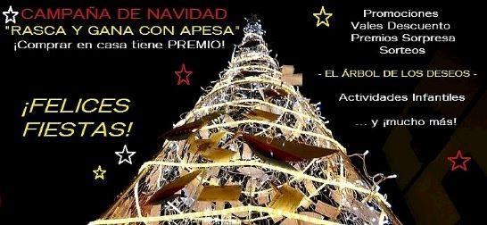 CANGAS DEL NARCEA.- APESA prepara la Navidad
