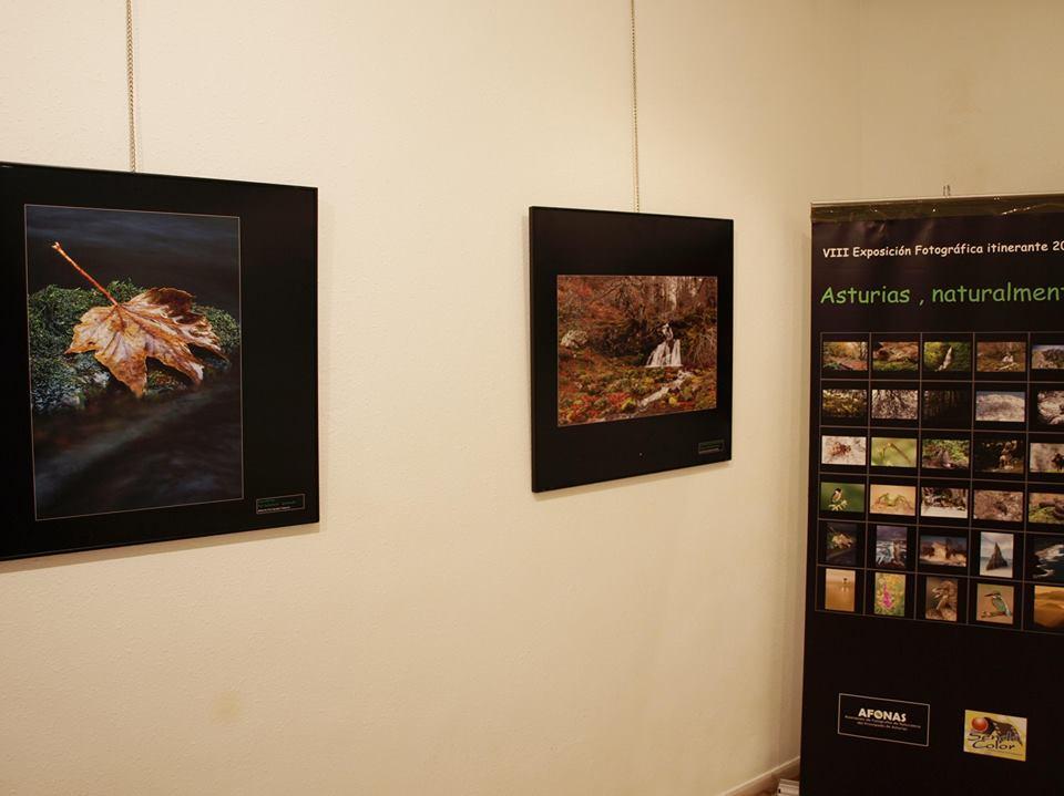 TINEO.- Exposición de fotografía de naturaleza