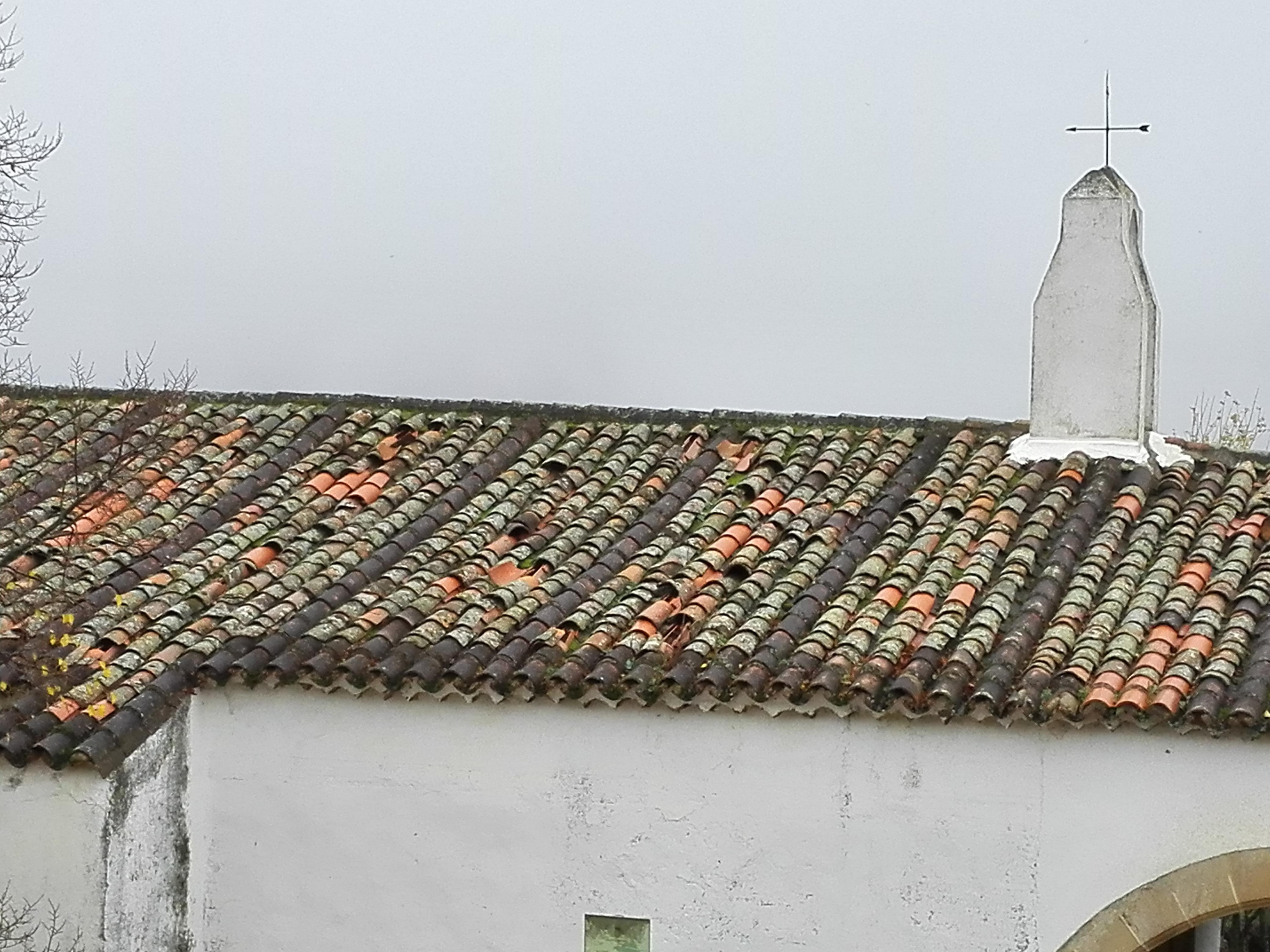 La foto y su pie: El  tejado de la Concepción