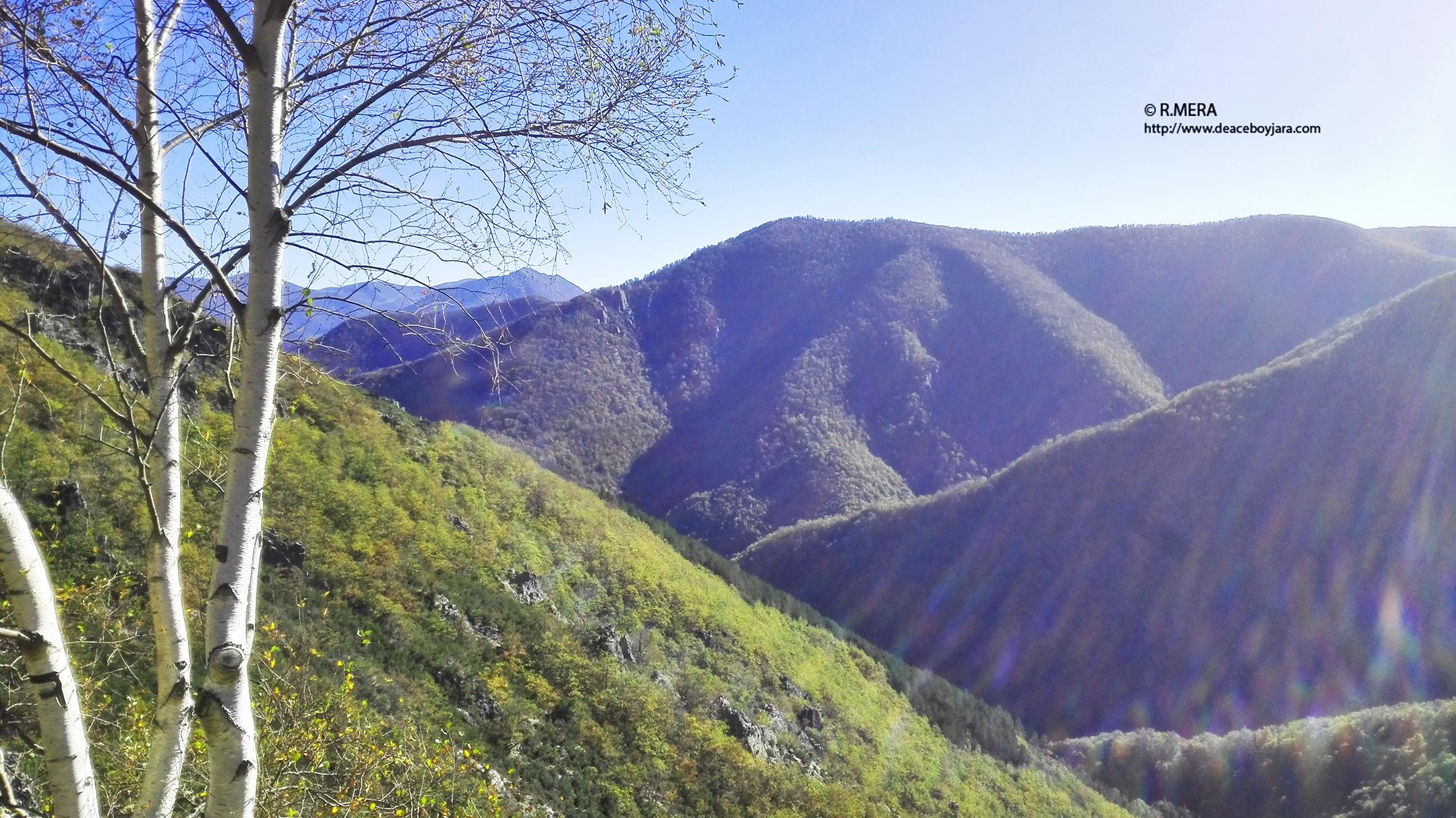 CANGAS DEL NARCEA.- Moal pide la dimisión de los representantes ambientalistas en los órganos del parque