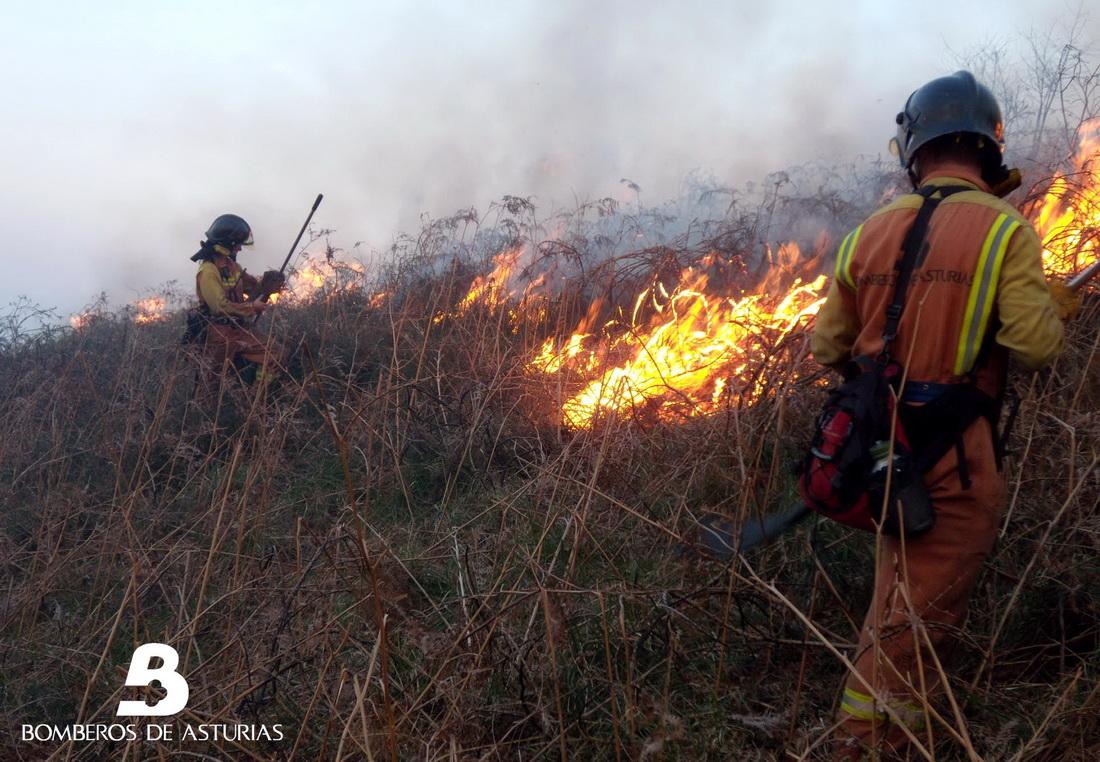 TINEO.-Investigan la implicación de un vecino de Tineo en un incendio