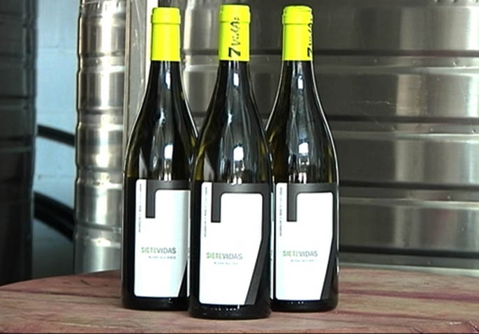 CANGAS DEL NARCEA.- Méritos de nuestros vinos