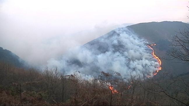 CANGAS DEL NARCEA. No habrá ayudas de la PAC para terrenos quemados mientras no recuperen la cubierta vegetal