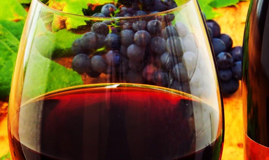 CANGAS DEL NARCEA.- El parador de Corias potenciará el vino de Cangas