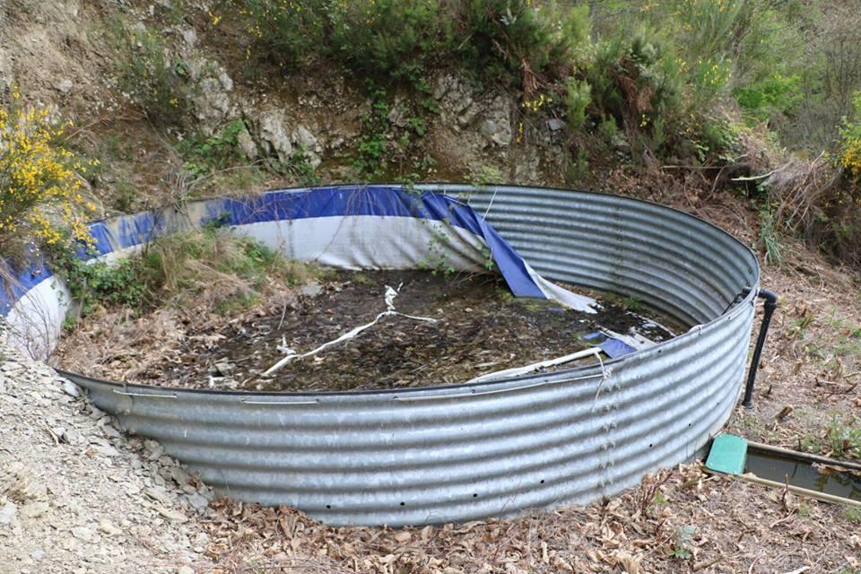 CANGAS EL NARCEA.- El mantenimiento del monte de Moal corresponde al propietario, según la Consejería