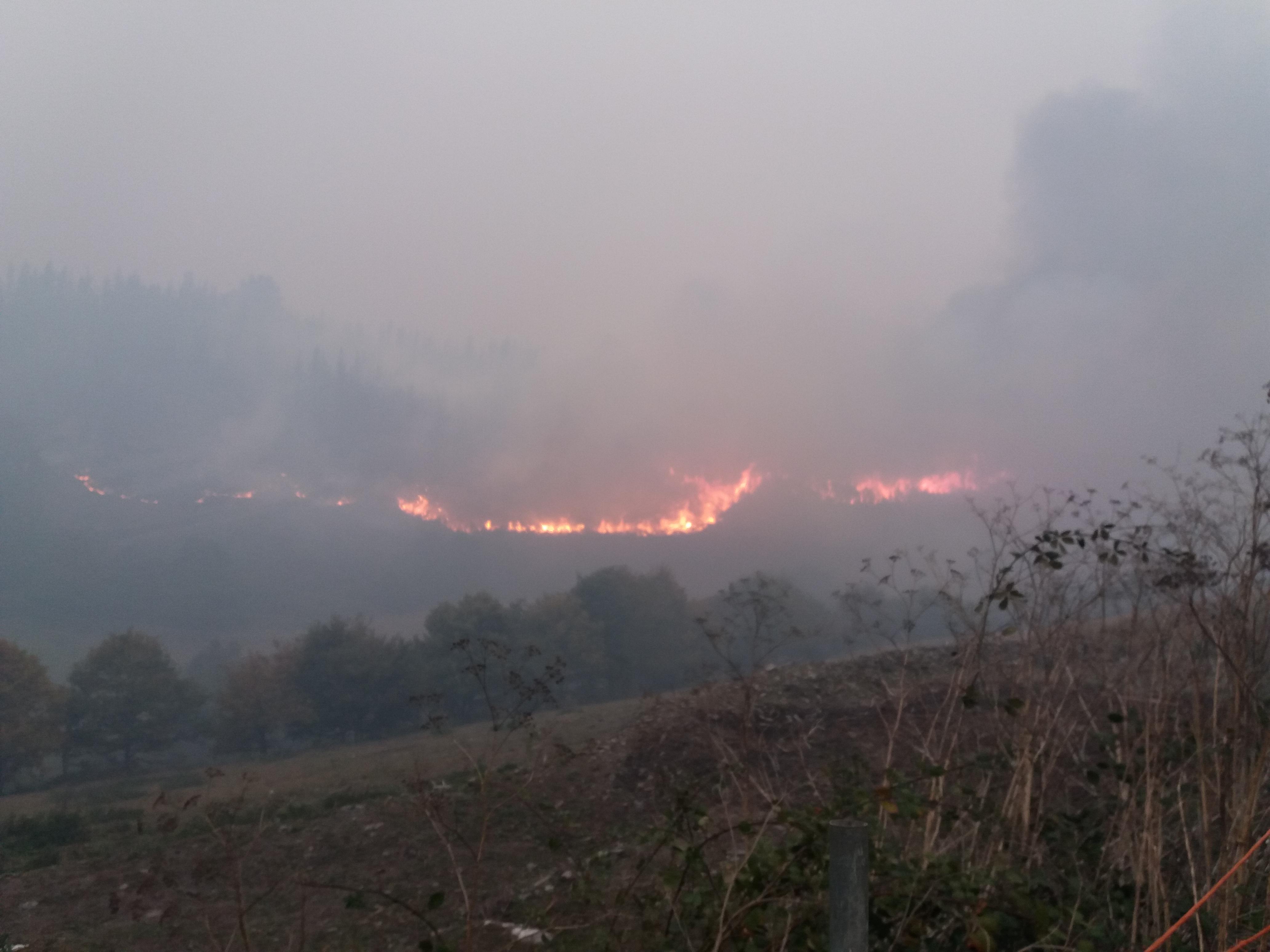 ALLANDE.- Se inicia la recogida de datos sobre daños de incendios