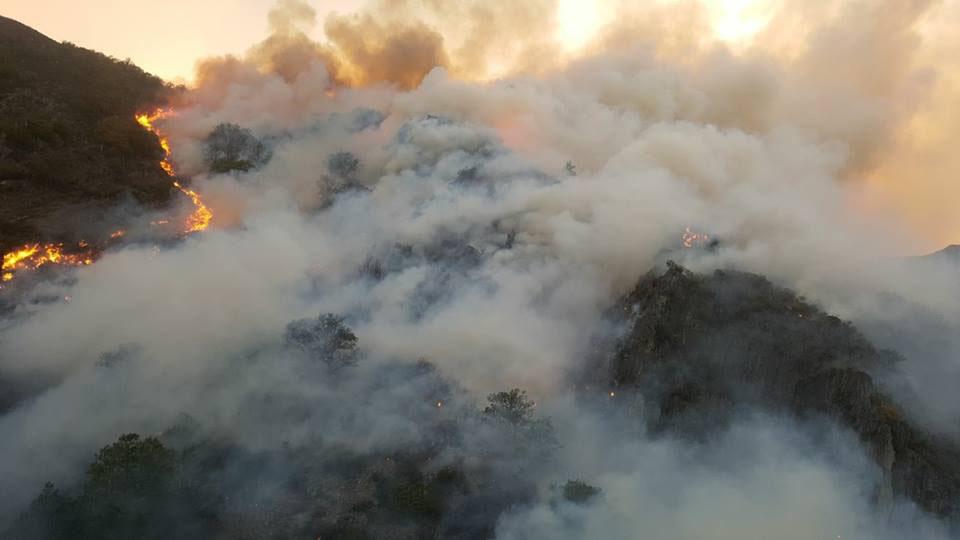 """UCA señala: """"Acusar a los ganaderos de los incendios es obsceno"""""""