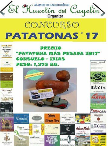 """TINEO.- Fallado el concurso """"Patatonas 2017"""""""