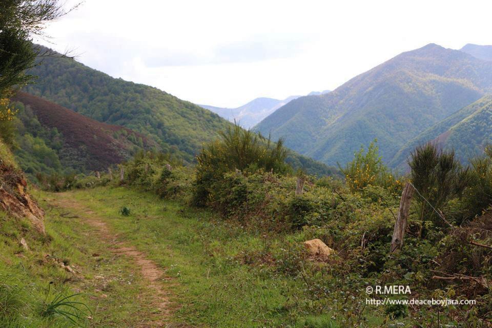 SUROCCIDENTE.- 100.000 euros para el desarrollo de zonas forestales