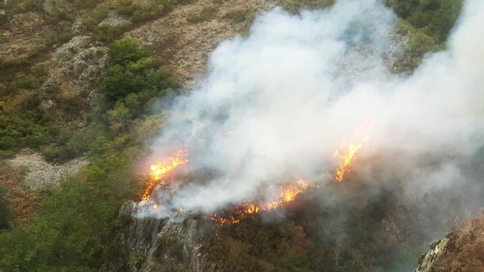 SUROCCIDENTE.- Ecologistas exigen la inmediata veda de caza en terrenos quemados