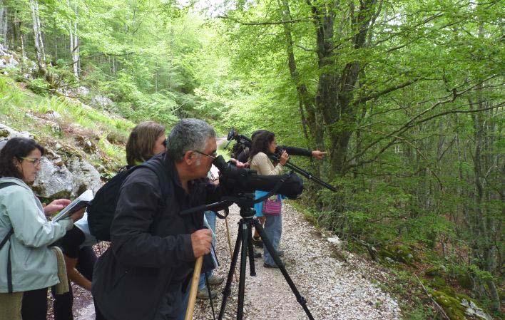 SUROCCIDENTE.-El avistamiento de fauna cómo actividad de turismo