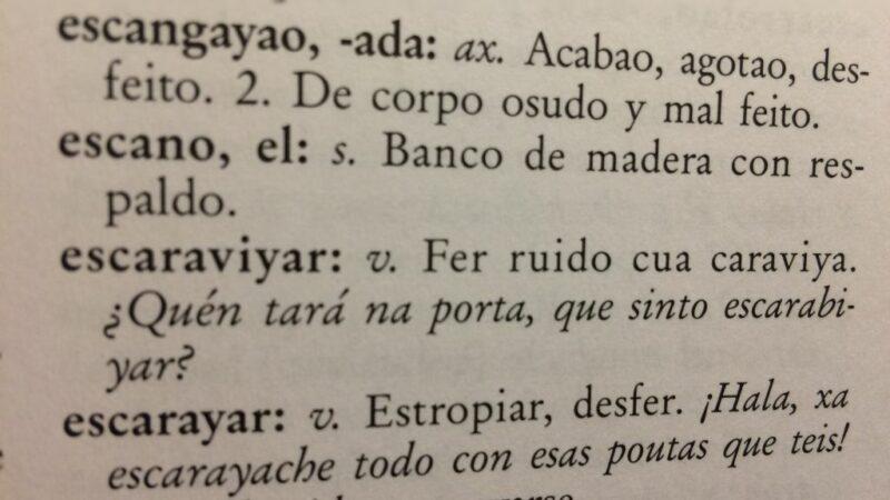 Cincuenta mil € para un diccionario del gallego-asturiano
