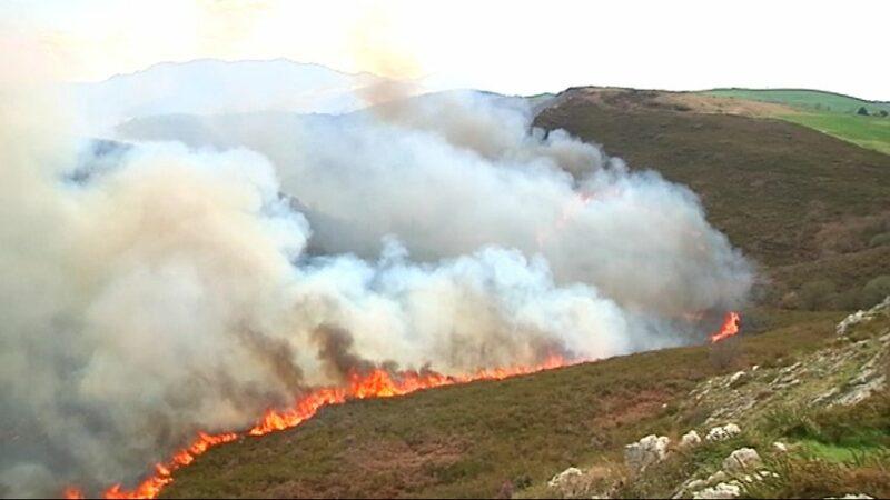Nueve meses de prisión y 67.000 € en multa e indemnizaciones como responsable de un incendio en Tineo