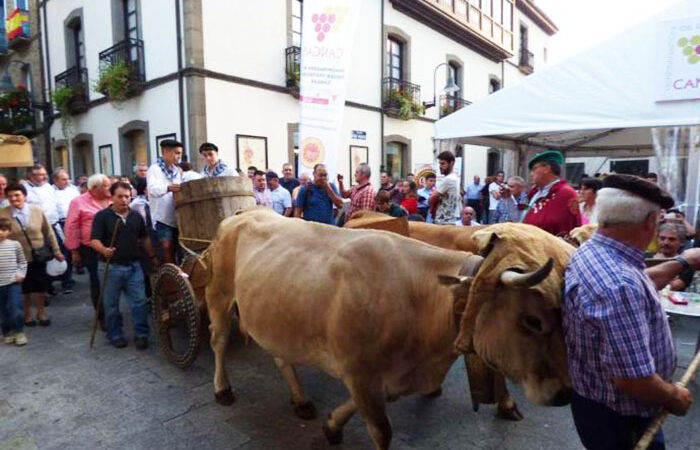La DOP Cangas, APROVICAN y la IGP Chosco de Tineo no participarán en la Fiesta de la Vendimia
